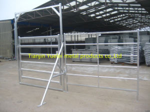 Farm Livestock Equipment Steel Oval Tube Cattle Yard Panel pictures & photos
