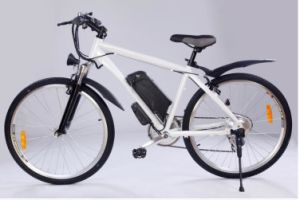 2016 Fast Higher Power E-Bike 48V 750W Mountain Bike Battery pictures & photos
