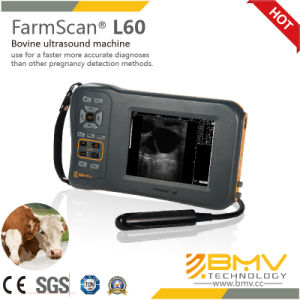Farmscan L60 Palmtop Portable Digital Ultrasound Scanner pictures & photos