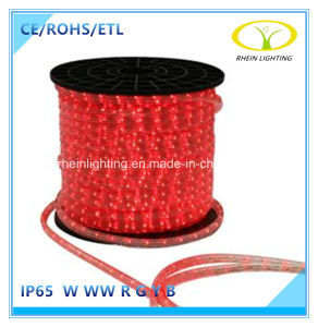 SMD5050 IP65 50m/Roll LED Rope Light with ETL Approval pictures & photos