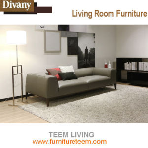 Teem Hotel Lobby Sofa pictures & photos