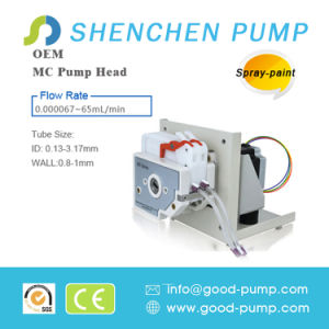 Plastic DC Brushless Motor OEM Peristaltic Pump Made in China pictures & photos