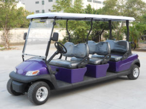Purple Body 6 Seater Electric Golf Car with Excar Logo pictures & photos
