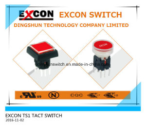 Tact Switch TS1 with Lamp for Audio Products pictures & photos