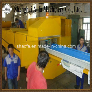 Arch Curving Sheet Roll Forming Machine (AF-k240) pictures & photos