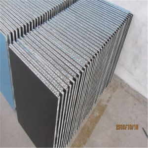 3003 Alloy Aluminium Honeycomb Sandwich Panel for Exterior and Interior Wall (HR47) pictures & photos