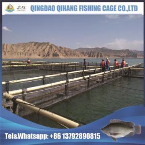Knotless Net Neritic Fish Farming Net Cage pictures & photos