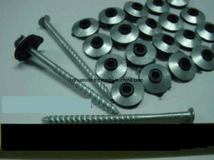 Galvanized Roofing Screw with Washer/ Roofing Nail with Washer pictures & photos