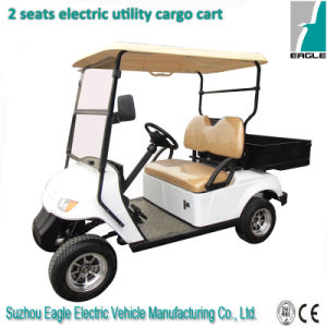3kw Adult Electric Car Beach Car 4X4 ATV, Eg2029h pictures & photos
