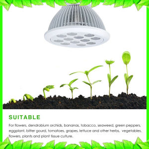 Plant Grow LED Light E27 Bulb Grow Light Green House Lighting pictures & photos