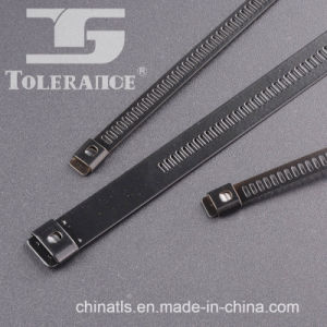 Epoxy Ladder Type Self Locking Stainless Steel Cable Tie pictures & photos