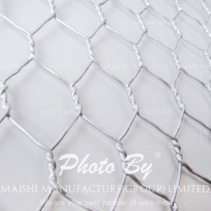 Grillage Maille Hexagonale 13mm Galvanized pictures & photos