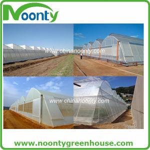 Agriculture Plastic Film/ High Quality EVA Greenhouse Film/Three-Layer EVA Agriculture Greenhouse Film with Corridor pictures & photos