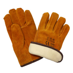 Thinsulate Full Lining Winter Warm Cow Leather Drivers Driving Gloves pictures & photos