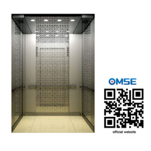 Chinese Elevator Manufacturer pictures & photos