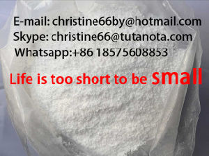 Primobolan Steroids Methenolone Enanthate Builds Lean Muscle Top Selling Human Growth 303-42-4 Christine pictures & photos