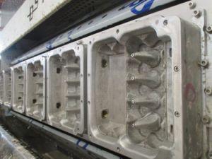 Egg Carton Machine (EC5400) pictures & photos