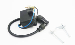 Cdi Electron Ignition for All Motor Kit pictures & photos