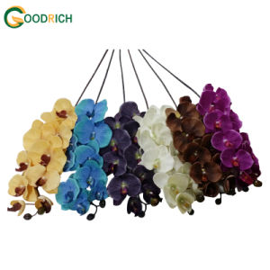 Real Touch Orchid Artificial Flower