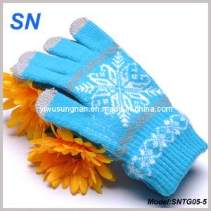 2015 Touchscreen Friendly Apple/Blackberry Gloves (SNTG05-5) pictures & photos
