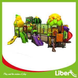 Animal Theme Outdoor Playground Equipment pictures & photos