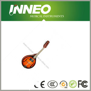 Popular Design Mandolin String Instruments (YN-MD029E)