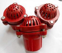 Cast Iron Foot Valve with Filter pictures & photos