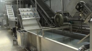 Mango Juice Processing Line pictures & photos