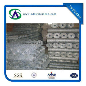 Poultry Wire 1/2′′ Hex Mesh Chicken Wire, Chicken Wire Mesh pictures & photos
