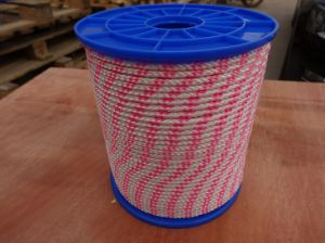 Polyester Briaded Rope-White with Pink pictures & photos