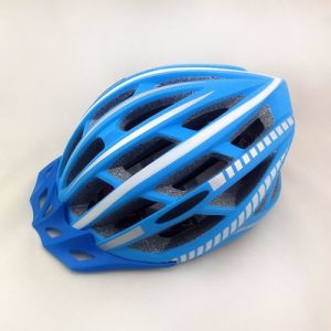 Mountain Bike Helmet Sport Helmet (H-53)