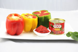 Tomato Paste Exporter pictures & photos