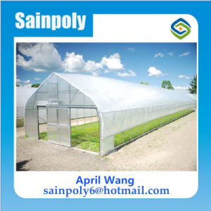 Low Cost Single Span Plastic Film Agricultural Tunnel Greenhouse pictures & photos