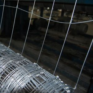 High Carbon Steel Wire Farm Field Fence pictures & photos
