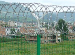 Durable Good Quality Razor Barbed Wire pictures & photos
