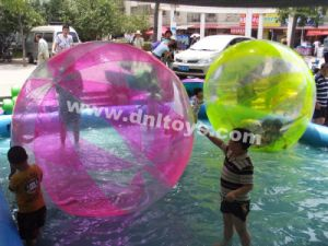 Promotion Inflatable Water Ball (DNL-WB-002)