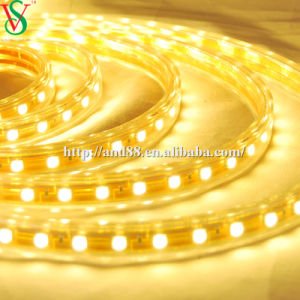 SMD5050 Warmwhite Strip Rope Light pictures & photos