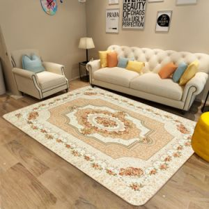 Modern Printing Living Room Carpet with Sponge Sandwich Plastic Dropping Backing pictures & photos
