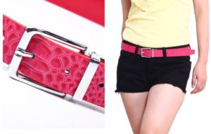 Fashion Crocodile Belt (HG-0257)
