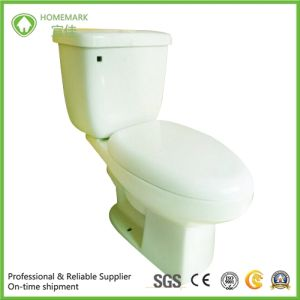Siphonic Two Pieces S-Trap Wc Toilet with Twyford Brand pictures & photos