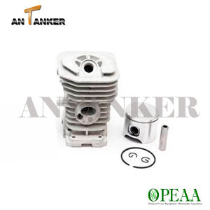 Chainsaw CS137 Cylinder Head Kit for Garden Tools pictures & photos