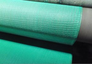 Fire Retardant Scaffold Net (SN130B) pictures & photos