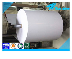Single Side PE Coated Paper Food Grade Paper
