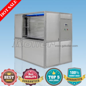 Fishery Use Plate Ice Machine 3tons/Day (HYF30) pictures & photos