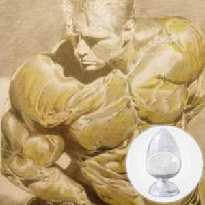 Hot Andarine/401900-40-1 for Lean Muscle Gains (bulking) Bodybuilding Steroids pictures & photos