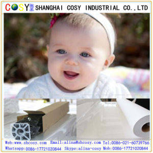 High Quality Glossy Self Adhesive Vinyl for Printing pictures & photos