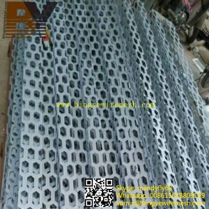 Building Material Faç Ade Panel Perforated Metal Sheet pictures & photos