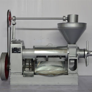 Rapeseed Oil Press (6YL-130D) pictures & photos