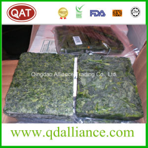 Block Frozen Whole Leaf Spinach with Kosher Certificate pictures & photos