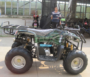 New Generation Cheap ATV Quads pictures & photos